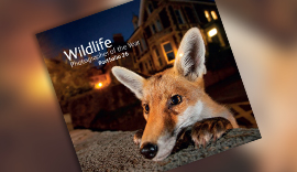 Wildlife Photographer of the Year portfolio book