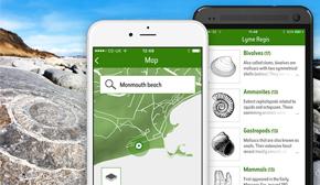 Fossil Explorer App