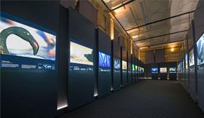 Wildlife Photographer of the Year exhibition