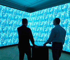 USA - Installation view of Immersion Room - Photo Matt Flynn ® 2014 CooperHewitt, Smithsonian Design Museum
